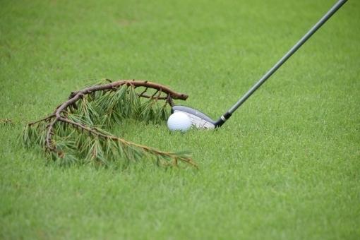 ゴルフルール 「ルースインペディメント」について