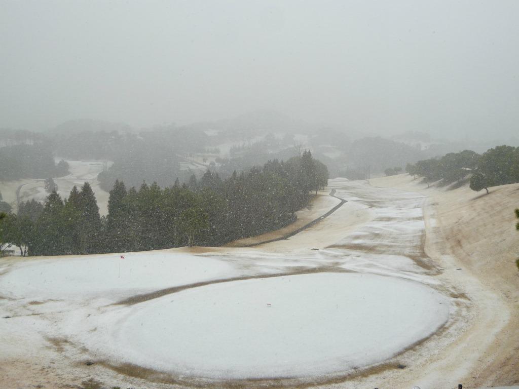 今日は、雪ですね...